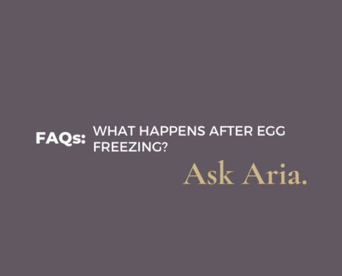 What happens after egg freezing?